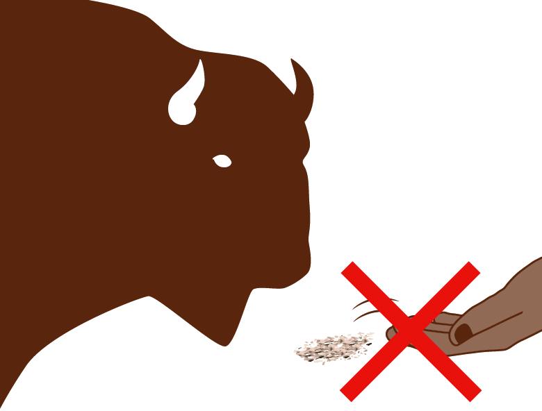 """Grafik """"Füttern von Wildtieren verboten"""""""