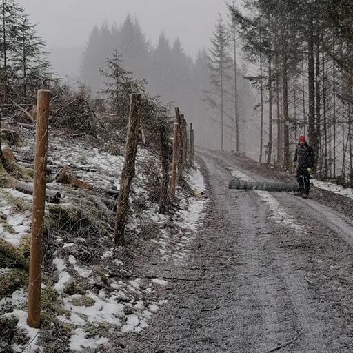 """Wisent-Ranger neben einem Zaun in der """"Wisent-Wildnis am Rothaarsteig"""" im Winter mit etwas Schnee"""